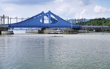 PRAI SWING BRIDGE